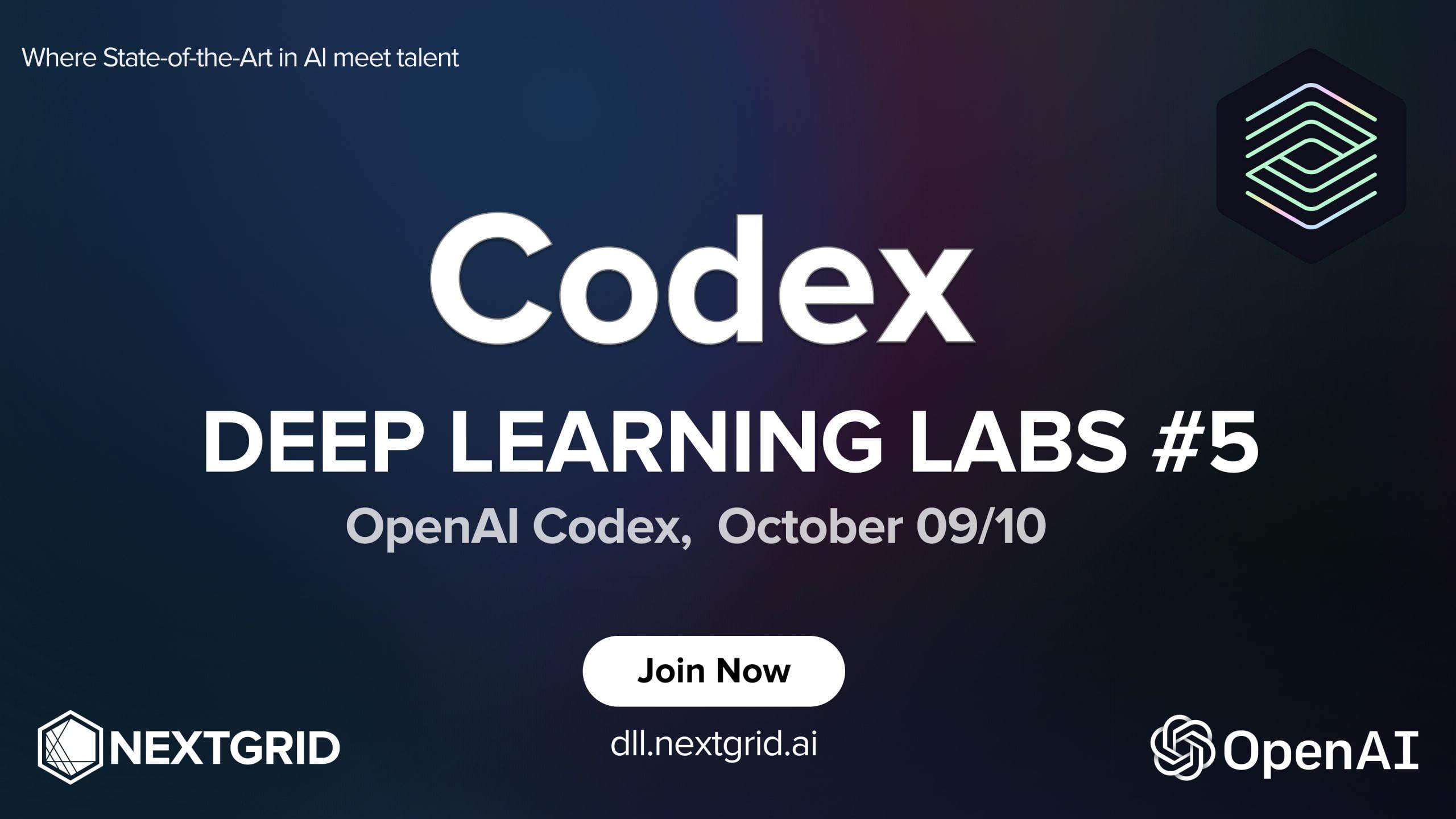 Deep Learning Labs #5, OpenAI Codex